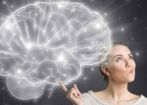Lo increíble del cerebro humano