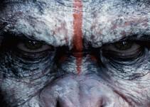 De Película W presenta: El Planeta de los Simios