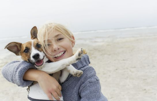 Backstreet dogs: De perros callejeros a perros felices en Canadá