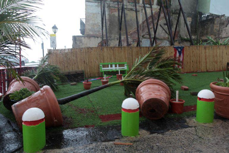 """""""Irma es un huracán histórico"""": Anthony Reynés, meteorólogo"""