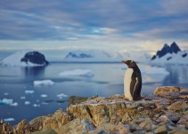 Del calentamiento global, la Antártida y… ¿el fin del mundo?