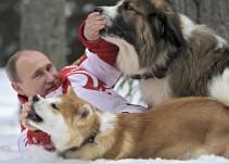 ¿Por qué todo mundo le regala perros a Vladimir Putin?