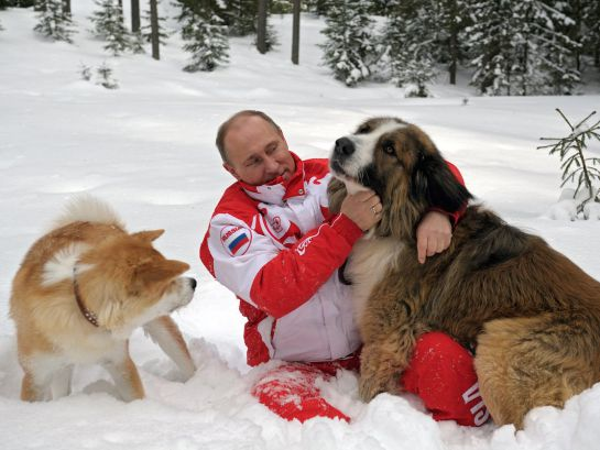 Vladimir Putin acompañado de su bulldog inglés 'Buffy'