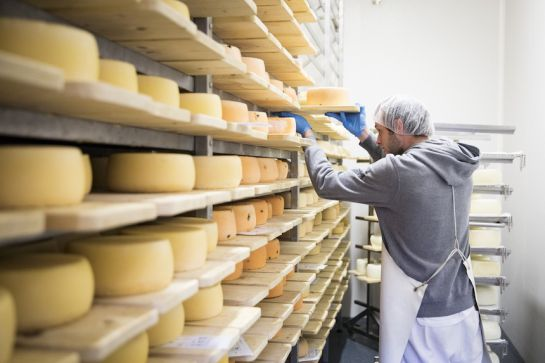 Guerra de quesos entre México y Europa