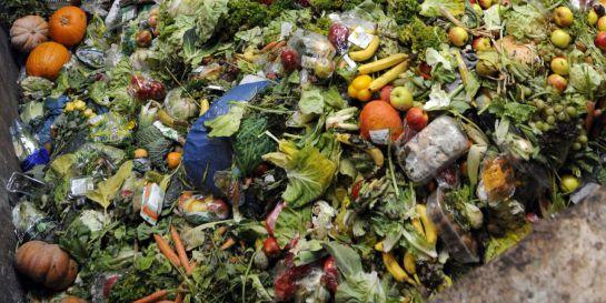 México desperdicia 20 millones de alimentos al año