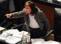 """""""Ley de Seguridad Interior, no es un cheque en blanco"""": Cristina Díaz"""