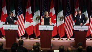 Rafael Fernández Castro: Madurez emocional de los peñistas para renegociar el TLC