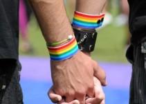 Charlatanes quienes curan la homosexualidad: COPRED