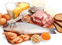 La verdad sobre las proteínas de origen animal