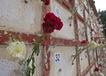 Jalisco vive una crisis forense profunda e indignante: Ana Karolina Chimiak