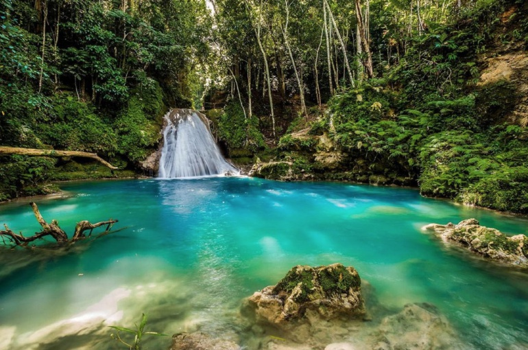Lo que debemos aprender de Jamaica
