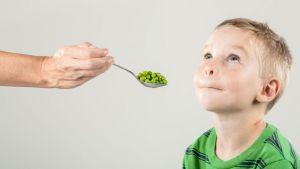 BBmundo: ¿Cómo dominar a tu picky eater?