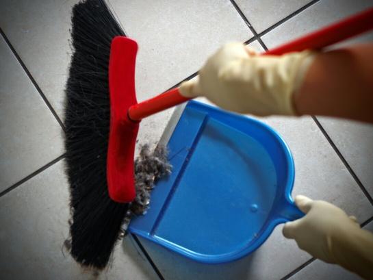 IMSS obligatorio para trabajadoras del hogar ¡Lo que debes saber!