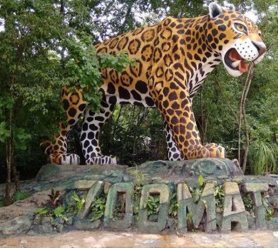 SOPITAS: Segundo acuerdo reparatorio en Chiapas