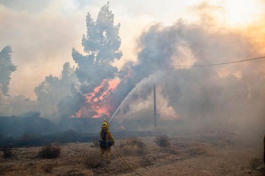 SOPITAS: Baja California enfrenta la peor ola de incendios en su historia