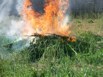 Incinera PGR más de ocho toneladas de drogas en Jalisco