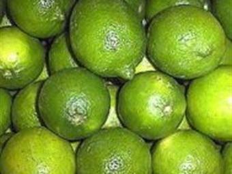 Afecta narco el precio del limón
