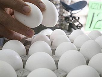 Podría continuar importación de huevo hasta 2013: SE