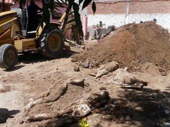 Suman 16 los cuerpos encontrados en fosas clandestinas en la Barca, Jalisco