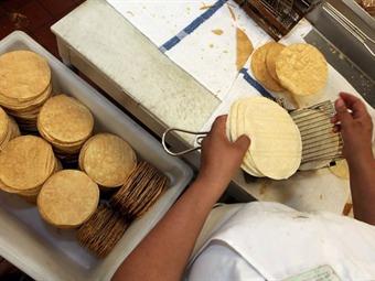Tortillas, maíz y bolillo no tendrán IEPS: SHCP