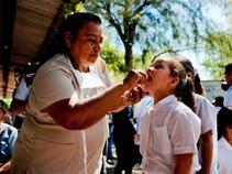 Alerta OMS sobre riesgo de propagación de virus 'chikungunya' en América