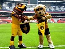 Juegan por el orgullo Pumas y América en CU