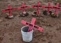 Ecatepec, Ciudad Juárez y Acapulco, los municipios con mayor número de feminicidios: ONU Mujeres
