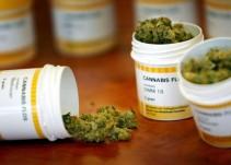Cofepris, lista para autorizar medicinas a base de marihuana: Narro