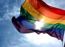 Peña anuncia medidas para llevar el matrimonio gay a la Constitución