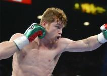 """Intercambio de """"golpes"""" entre el Canelo Álvarez y Conor McGregor"""