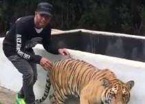 Lewis Hamilton le pega un gran susto a Tigresa que se llama como su ex novia