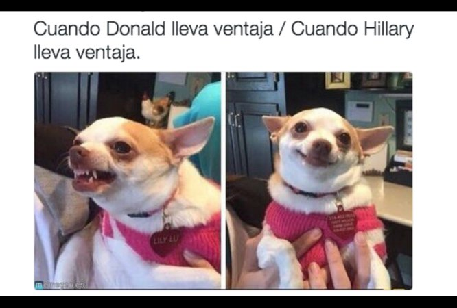 Internet reacciona con memes a la elección presidencial de Estados Unidos