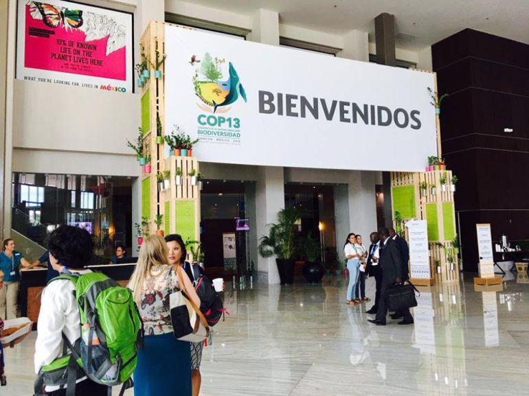 Acuerdos para proteger la biodiversidad en México