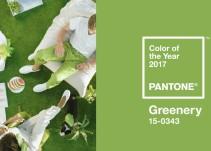 Pantone revela cuál es el color del 2017
