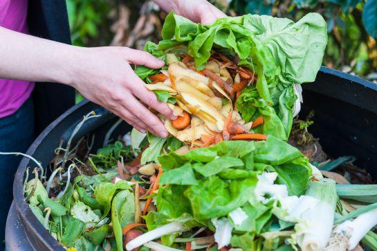Sancionarán a quien desperdicie comida en la CDMX