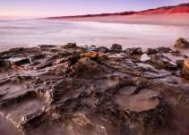 Descubren en Australia la huella del dinosaurio más grande del mundo