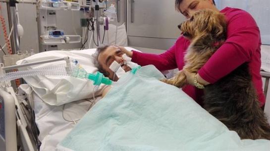 Hombre cae en coma, su mascota lo visita y reacciona