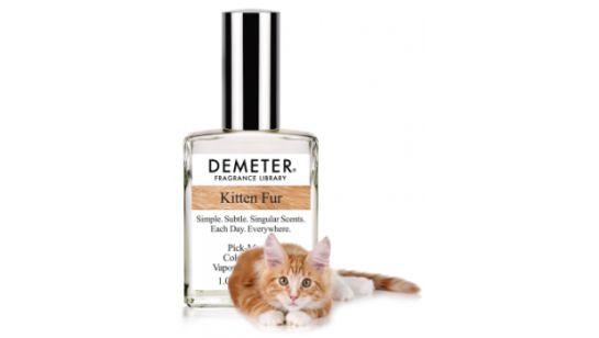 """Lanzan perfume con aroma a """"pelo de gato"""""""
