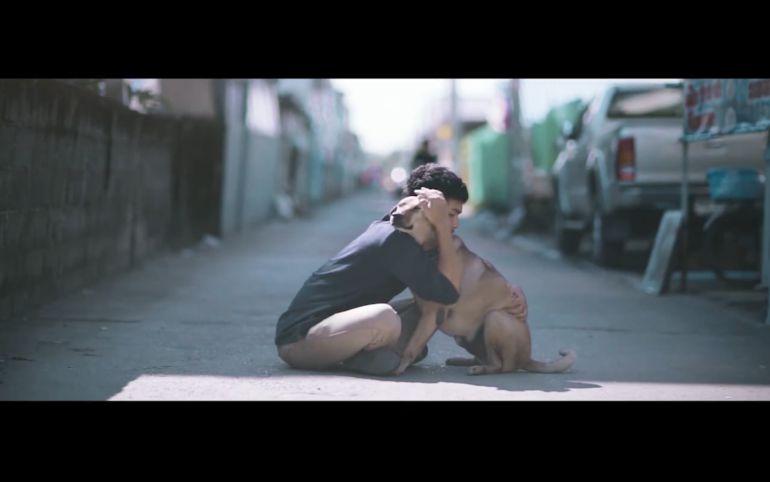 """""""El Primer Abrazo"""", la campaña para rescatar perros callejeros"""