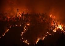 Las imágenes del incendio forestal en Portugal