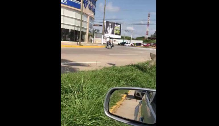 Conoce a #LordFuncionario; le quitó dulces a niño en Veracruz