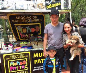 Abandonan a un perrito en la delegación Gustavo A. Madero