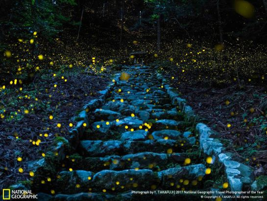 Mexicano se lleva el primer lugar en concurso de fotografía de National Geographic