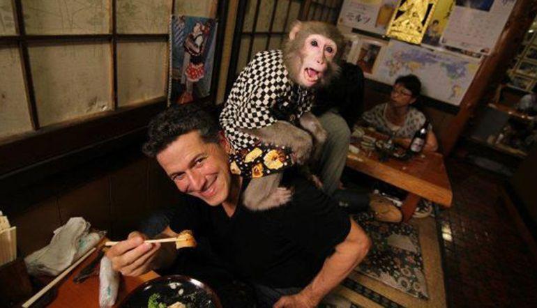 Bar es duramente criticado por tener monos como meseros
