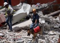 Urge la donación de víveres para damnificados en Xochimilco
