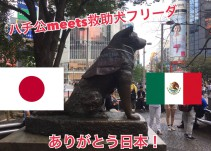 Colocan chaleco de Marina a estatua de 'Hachiko' en honor a 'Frida'