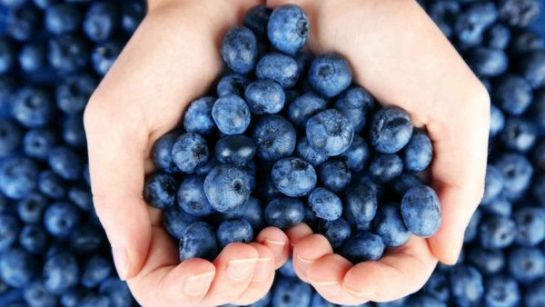 5 super alimentos infaltables para vivir bien