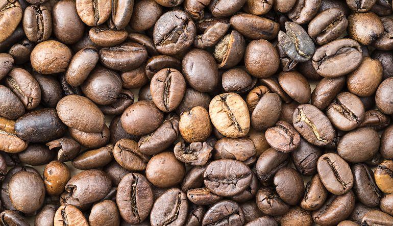 Café: Cultivos de café de Latinoamérica corren peligro por cambio climático