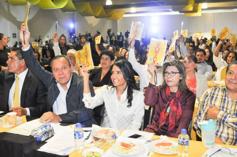 PRD elegirá a sus candidatos a través de un Consejo Nacional Electivo