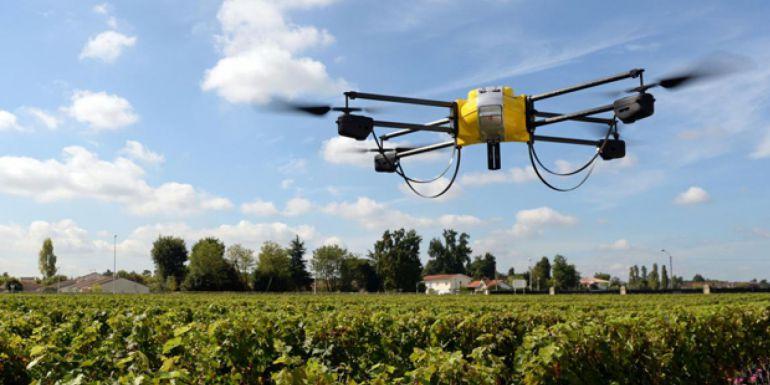 Drones plantan 100 mil árboles al día
